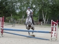 Club Hippique-Saint Germer de Fly   16