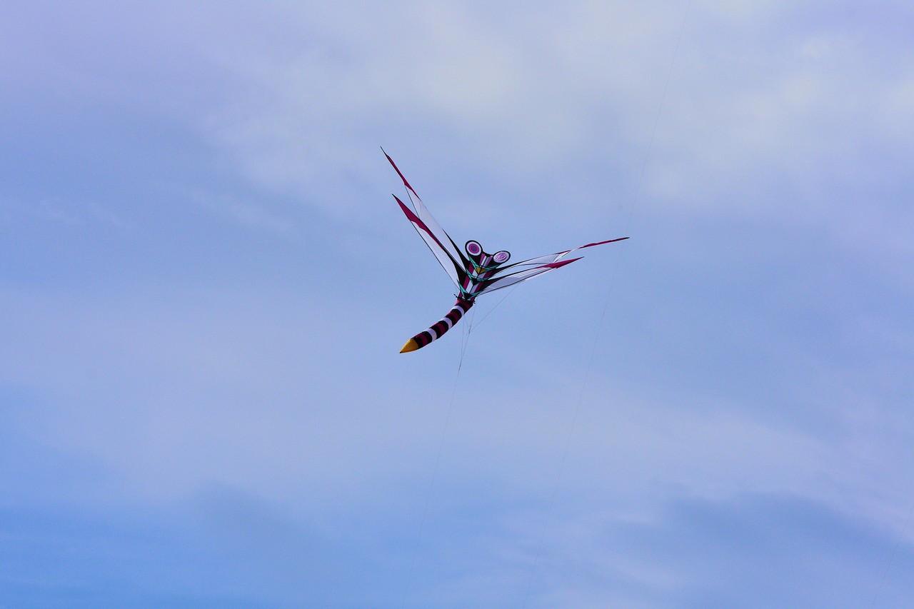 Cerf-volant de Dieppe  2018_51