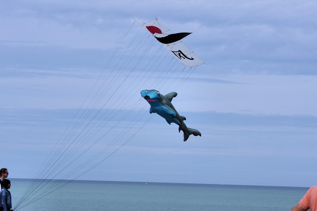 Cerf-volant de Dieppe  2018_60