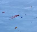 Cerf-volant de Dieppe  2018_01