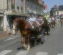 fete-du-cheval02