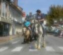 fete-du-cheval05
