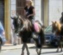 fete-du-cheval09