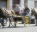 fete-du-cheval15