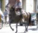 fete-du-cheval17