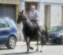 fete-du-cheval20