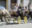 fete-du-cheval21
