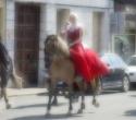 fete-du-cheval25