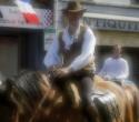 fete-du-cheval26