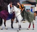 Fete du cheval04
