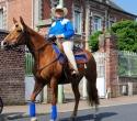 Fete du cheval10