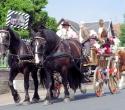 Fete du cheval14