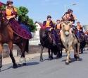 Fete du cheval18