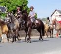 Fete du cheval31