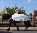 Fete du cheval34