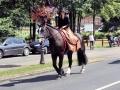 Fête du cheval 2016_50