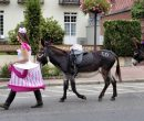 Fêtes du cheval 2018_01