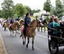 Fêtes du cheval 2018_35