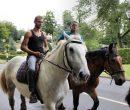 Fêtes du cheval 2018_40