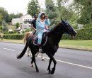 Fêtes du cheval 2018_44