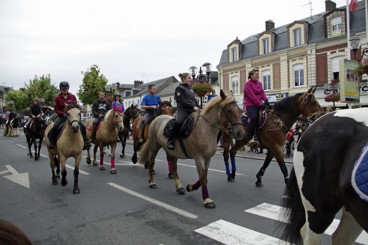 Fete du cheval 2015.10