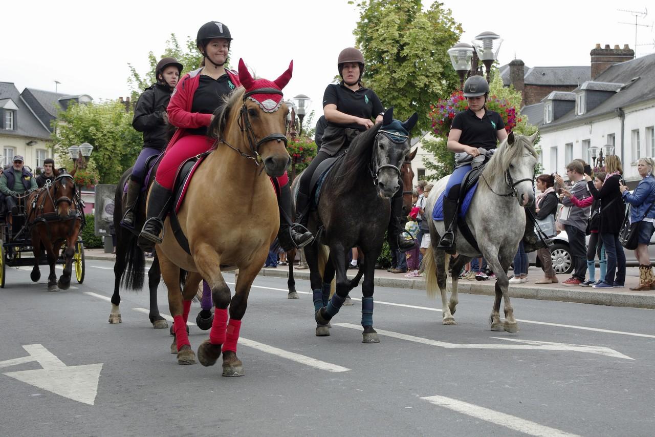Fete du cheval 2015.19