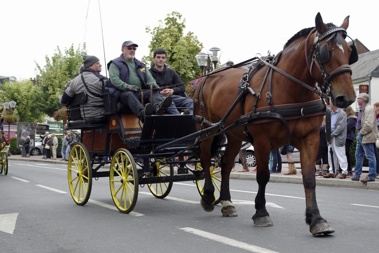 Fete du cheval 2015.20