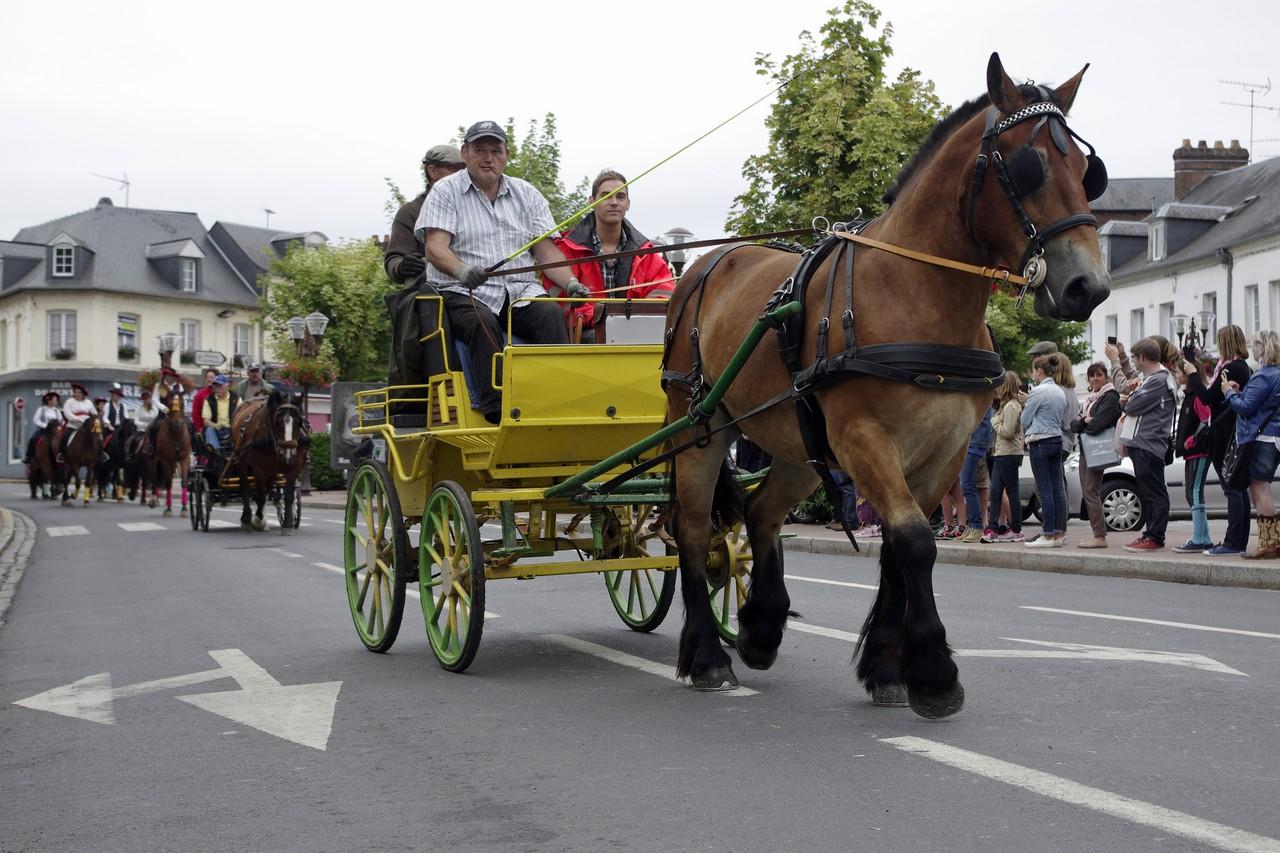 Fete du cheval 2015.21