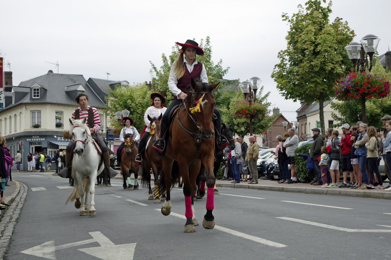 Fete du cheval 2015.23