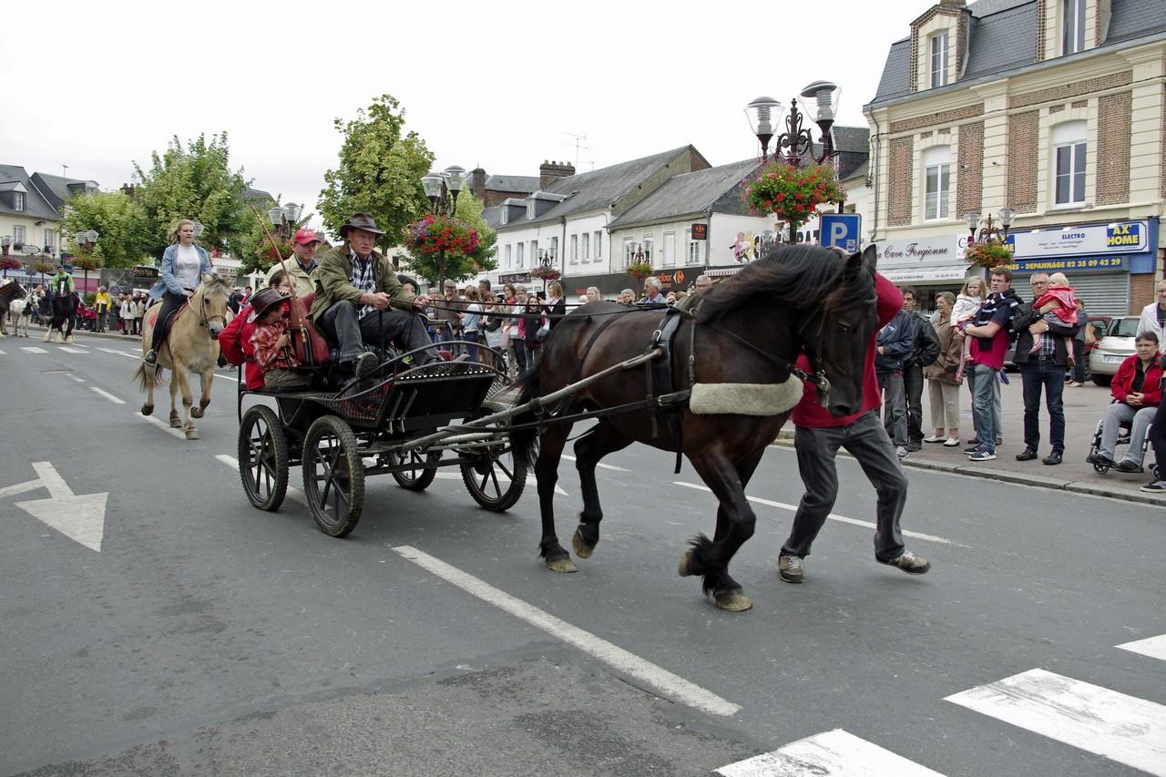Fete du cheval 2015.26