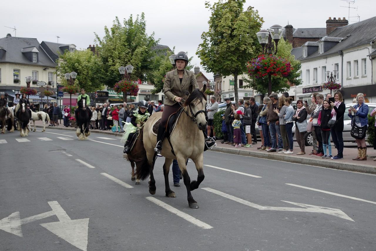 Fete du cheval 2015.28