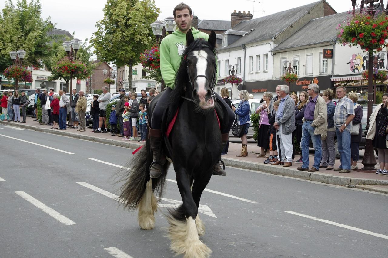 Fete du cheval 2015.29
