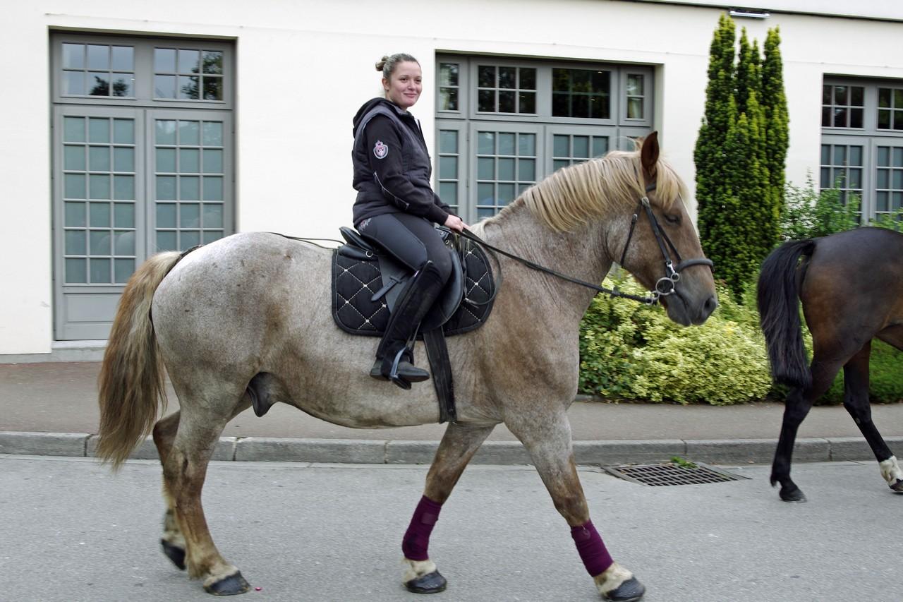 Fete du cheval 2015.39