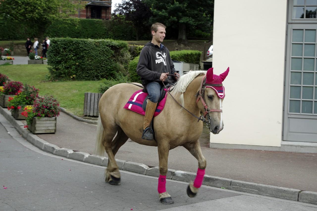 Fete du cheval 2015.40