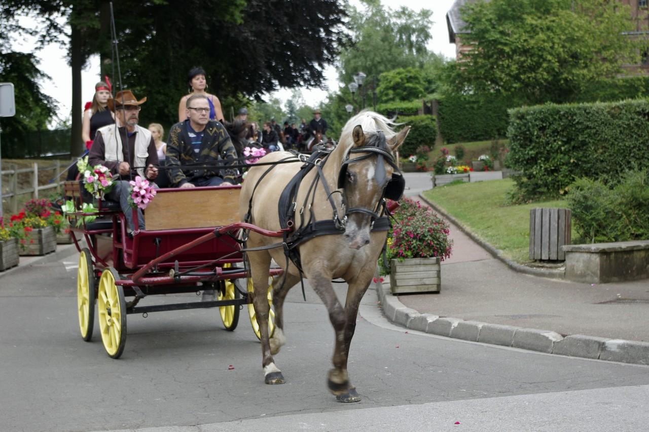 Fete du cheval 2015.43