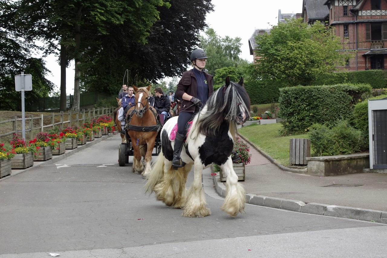 Fete du cheval 2015.45