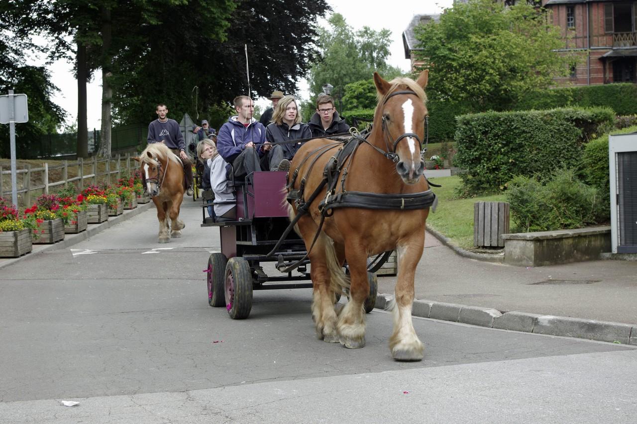 Fete du cheval 2015.46