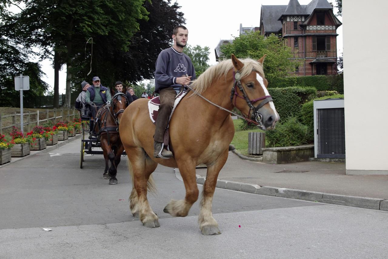 Fete du cheval 2015.47