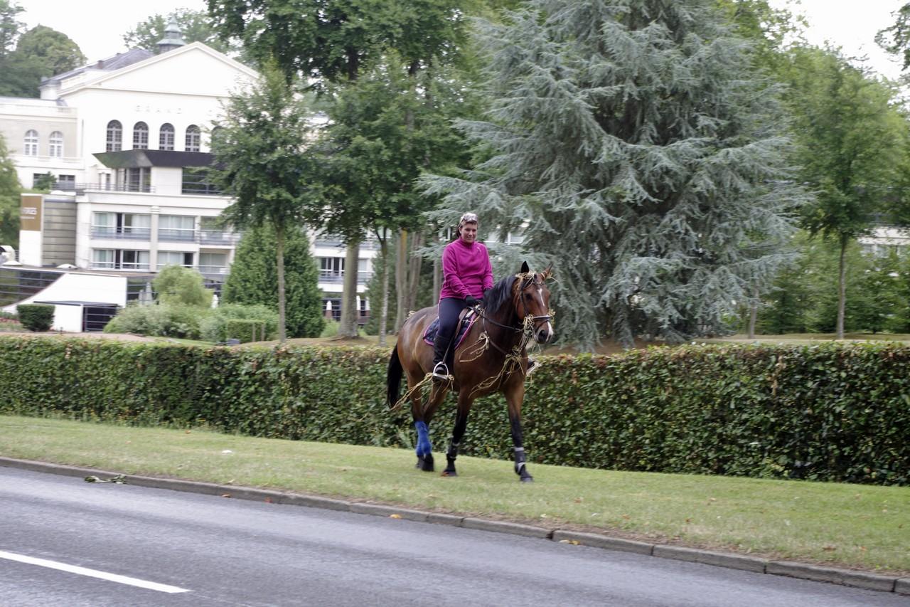 Fete du cheval 2015.53