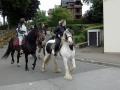 Fete du cheval 2015.50