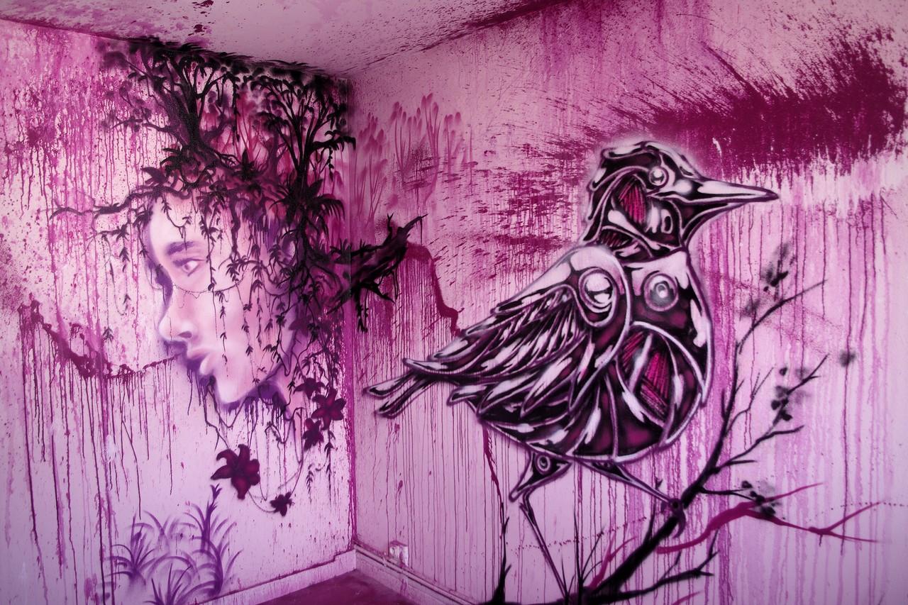 Graff11