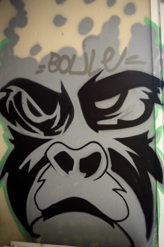 Graff27