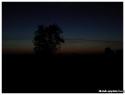 crepuscule01_i_-jpg-bis_
