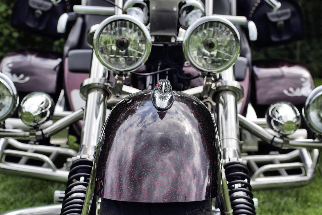 Normandy Rider's - 2016-07
