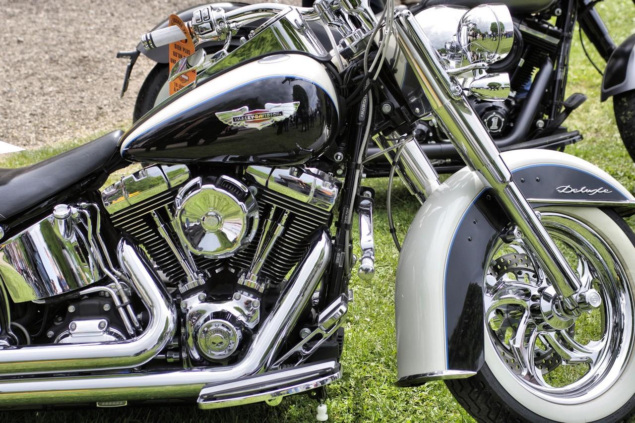 Normandy Rider's - 2016-16
