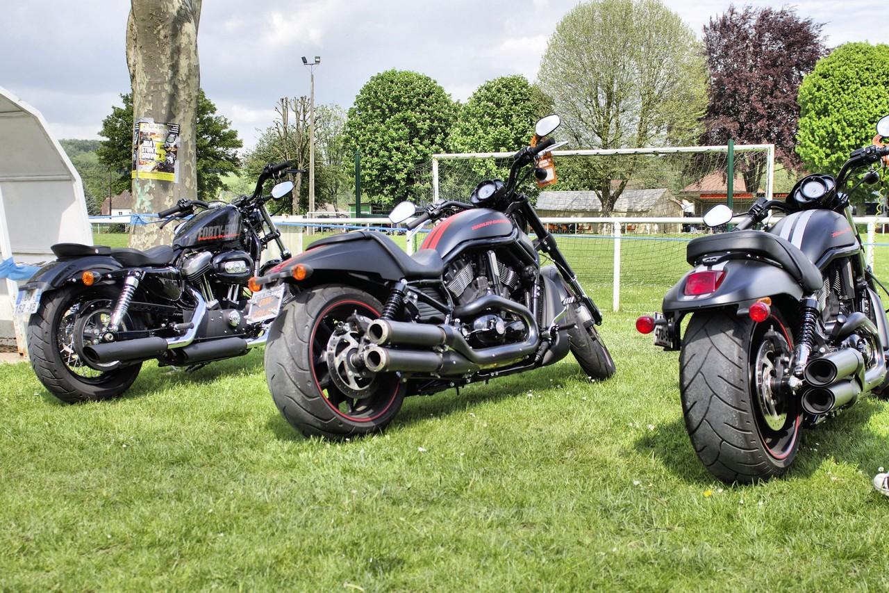 Normandy Rider's - 2016-41