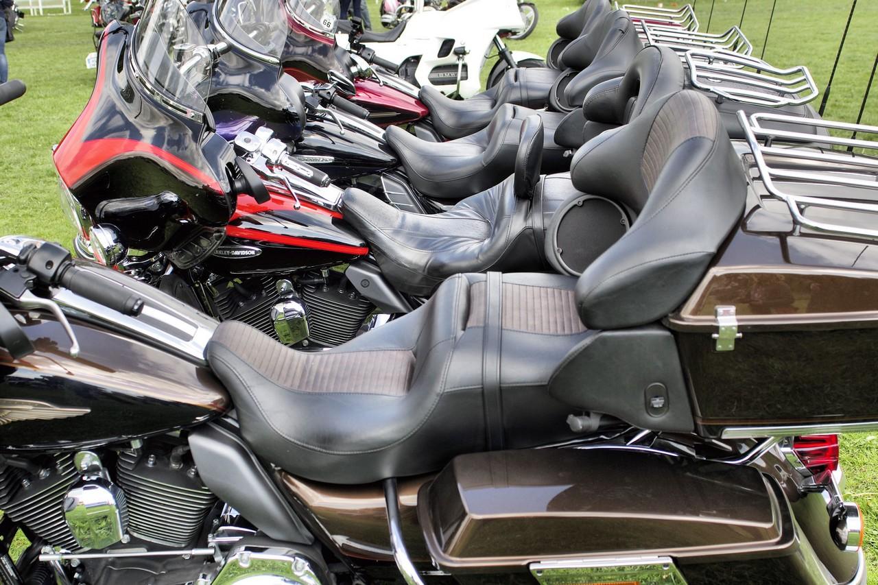 Normandy Rider's - 2016-51