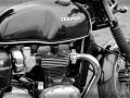 Normandy rider's 2017_05
