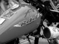 Normandy rider's 2017_11