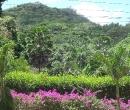 seychelles05